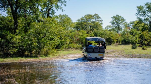 Game Drive - Botswana Safari Tours